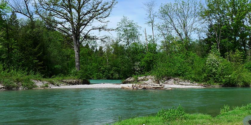 river-restoration