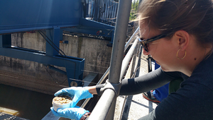 Master's degree student Lara Cayo takes samples of sewage sludge at Werdhölzli sewage treatment plant. (Photo: Elke Suess, Eawag)