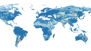 Global hazard map of groundwater arsenic pollution: Red indicates a high probability, dark blue a low probability, that more than 10 micrograms per litre of arsenic are present in groundwater. (Graphic: Podgorski et al., 2020)