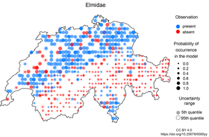 Occurrence of the beetle family Elmidae in Switzerland in the biodiversity monitoring data and in the model. Large blue dots and small red dots indicate an agreement between observation and model.