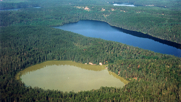 Clear or turbid? Shallow lakes can suddenly reach their tipping point. (Photo: International Institute for Sustainable Development IISD – Experimental Lakes Area ELA, Canada)