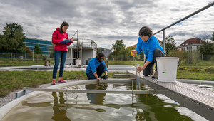 Researchers take water samples from one of the ponds. (Photo: Thomas Klaper)