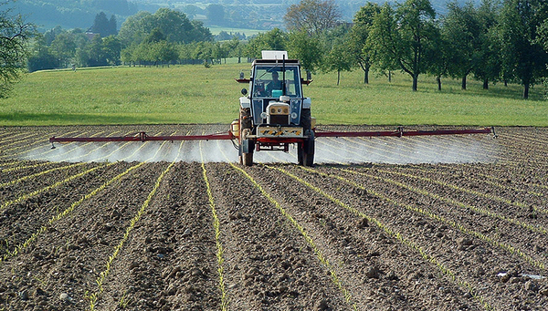 Pesticides from agriculture finish up in water bodies and harm microorganisms. (Photo: Eawag)