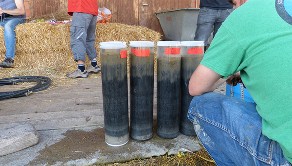 Sediment samples recently collected from the bottom of Lake Baldegg (Photo: ETH, Annika Fiskal)