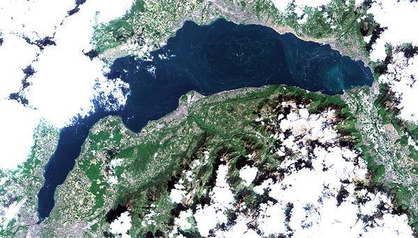Visible from an altitude of almost 800 km: pollen on Lake Geneva. (Photo: Sentinel-2; 10 m resolution)
