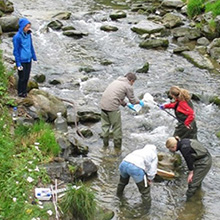water-quality-and-management