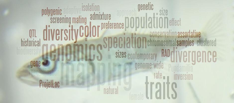 fish-genomics
