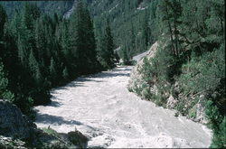 stream-ecology
