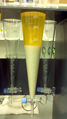 Sedimentation of calcium phosphate in stabilised fresh urine