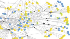 The network of Swiss water forums, which frequently take the form of working groups or subcommittees within larger associations. (Graphic: Fischer et al.)