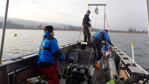 Sampling sediment cores on Greifensee near Zurich (photo: Aurea Chiaia, Eawag).