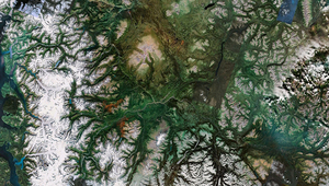 Dendritic branched river network (Photo: Paul Bourke/Google Earth fractals)