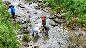 Fig. 1: The scientists investigated water chemistry and biology in reaches upstream and downstream of WWTPs. (Photo: Eawag)