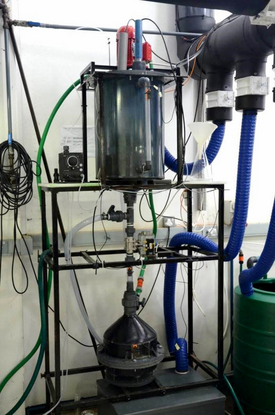 Automated separation of the mineral struvite from urine in a collaboration of Eawag with the University of KwaZuluNatal in South Africa. Struvite can be used as phosphorus fertiliser. (Photo: Eawag)